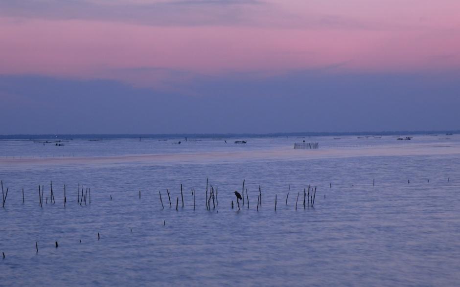 Lagoon at Dusk Pink and Blue