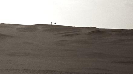 Desert Silhouettes 2